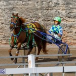 Harness Pony Racing Bermuda, December 26 2017-8144