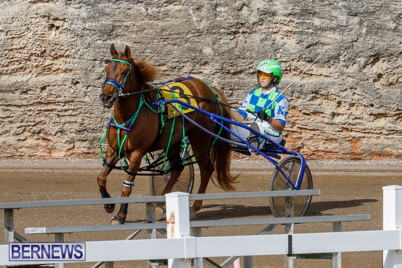 Harness-Pony-Racing-Bermuda-December-26-2017-8144
