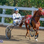 Harness Pony Racing Bermuda, December 26 2017-8151