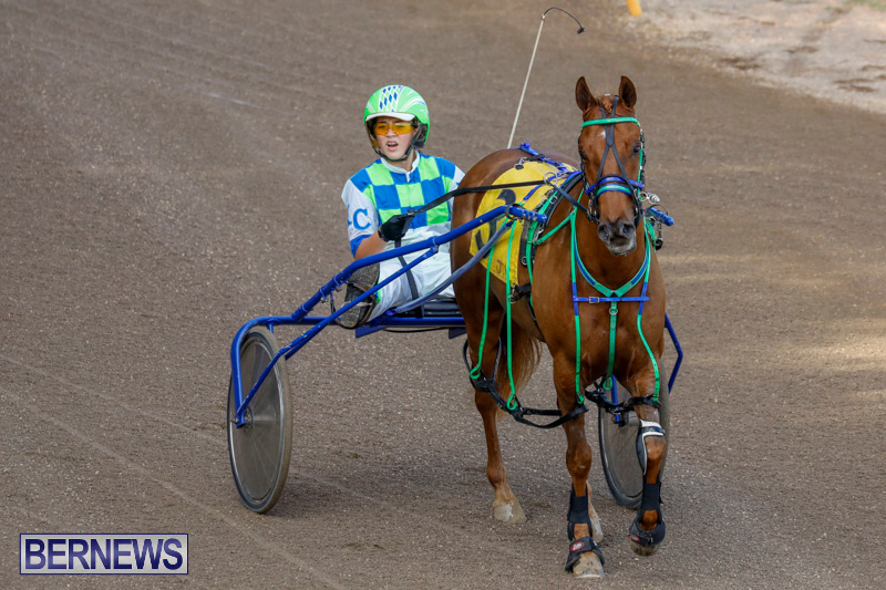 Harness-Pony-Racing-Bermuda-December-26-2017-8156