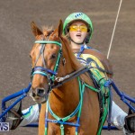 Harness Pony Racing Bermuda, December 26 2017-8158