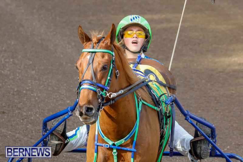 Harness-Pony-Racing-Bermuda-December-26-2017-8158