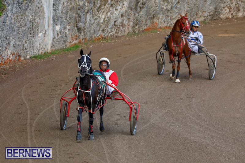 Harness-Pony-Racing-Bermuda-December-26-2017-8166