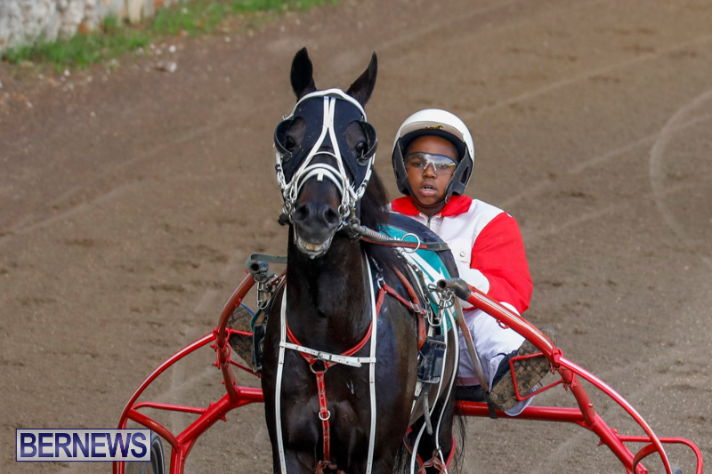 Harness-Pony-Racing-Bermuda-December-26-2017-8168