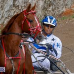 Harness Pony Racing Bermuda, December 26 2017-8171