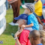 Harness Pony Racing Bermuda, December 26 2017-8283