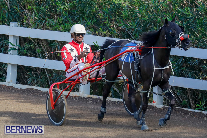 Harness-Pony-Racing-Bermuda-December-26-2017-8285