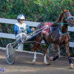 Harness Pony Racing Bermuda, December 26 2017-8287