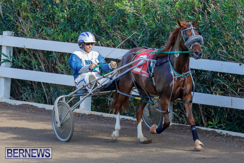 Harness-Pony-Racing-Bermuda-December-26-2017-8287