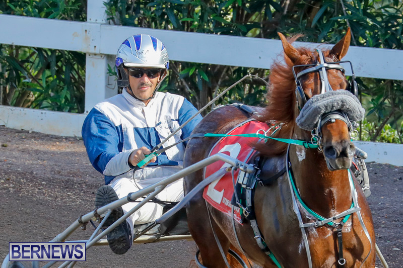 Harness-Pony-Racing-Bermuda-December-26-2017-8294
