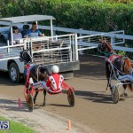 Harness Pony Racing Bermuda, December 26 2017-8299
