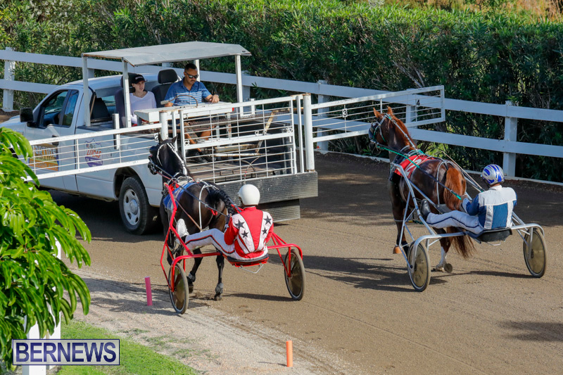 Harness-Pony-Racing-Bermuda-December-26-2017-8299