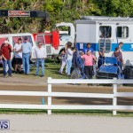 Harness Pony Racing Bermuda, December 26 2017-8302