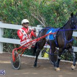 Harness Pony Racing Bermuda, December 26 2017-8329