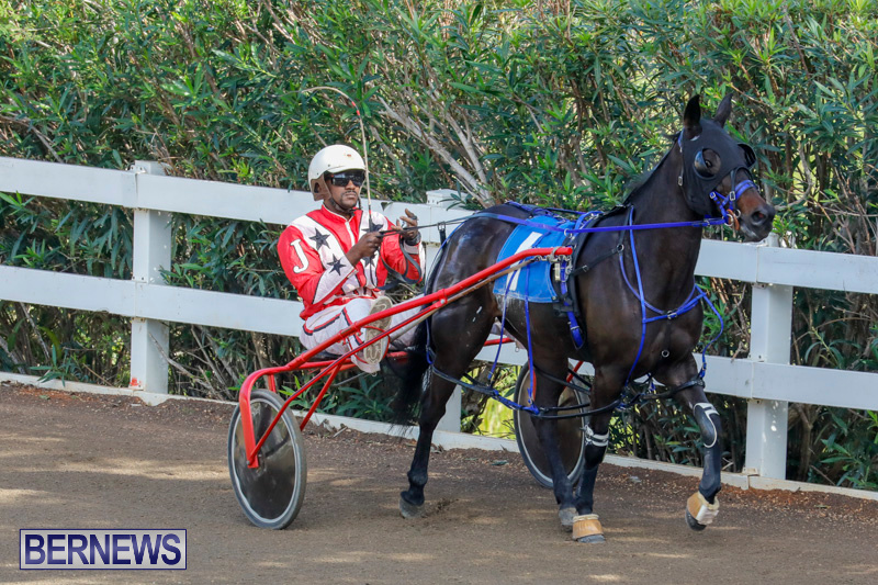 Harness-Pony-Racing-Bermuda-December-26-2017-8329