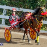 Harness Pony Racing Bermuda, December 26 2017-8334