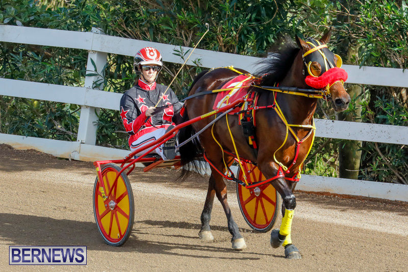 Harness-Pony-Racing-Bermuda-December-26-2017-8334