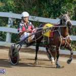 Harness Pony Racing Bermuda, December 26 2017-8339