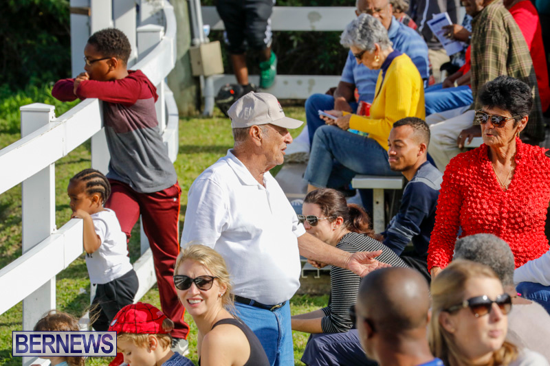 Harness-Pony-Racing-Bermuda-December-26-2017-8354