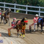 Harness Pony Racing Bermuda, December 26 2017-8366