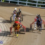 Harness Pony Racing Bermuda, December 26 2017-8371