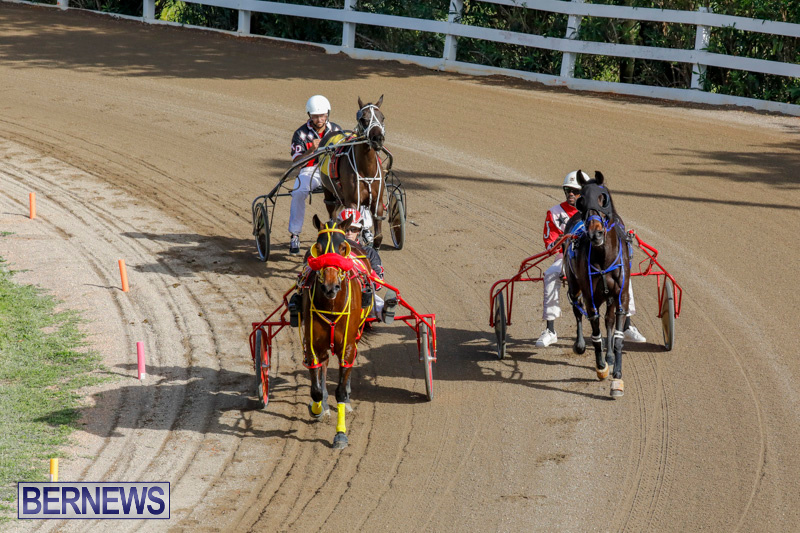Harness-Pony-Racing-Bermuda-December-26-2017-8371