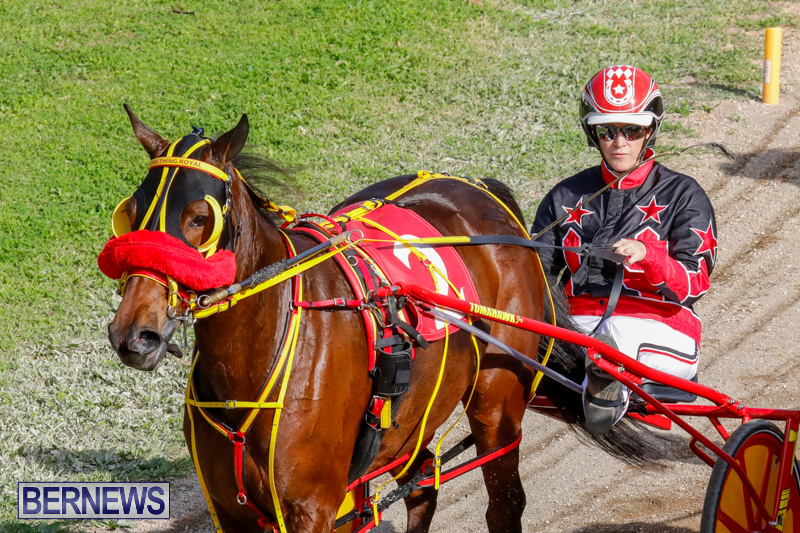 Harness-Pony-Racing-Bermuda-December-26-2017-8376