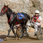 Harness Pony Racing Bermuda, December 26 2017-8385
