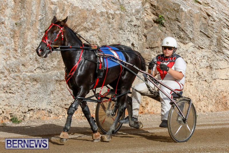 Harness-Pony-Racing-Bermuda-December-26-2017-8385