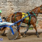 Harness Pony Racing Bermuda, December 26 2017-8396