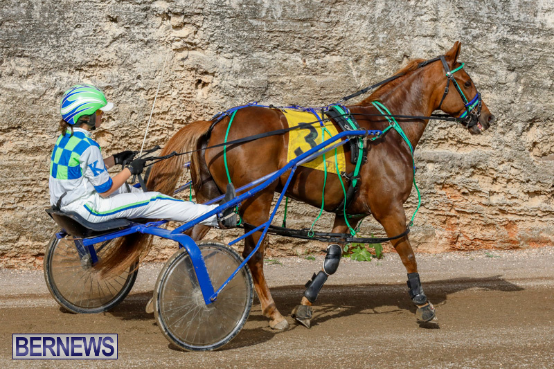Harness-Pony-Racing-Bermuda-December-26-2017-8396
