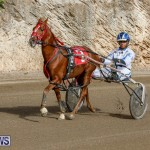 Harness Pony Racing Bermuda, December 26 2017-8400