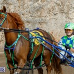 Harness Pony Racing Bermuda, December 26 2017-8412