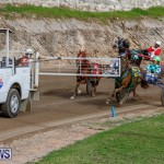Harness Pony Racing Bermuda, December 26 2017-8414