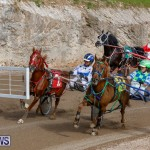Harness Pony Racing Bermuda, December 26 2017-8416