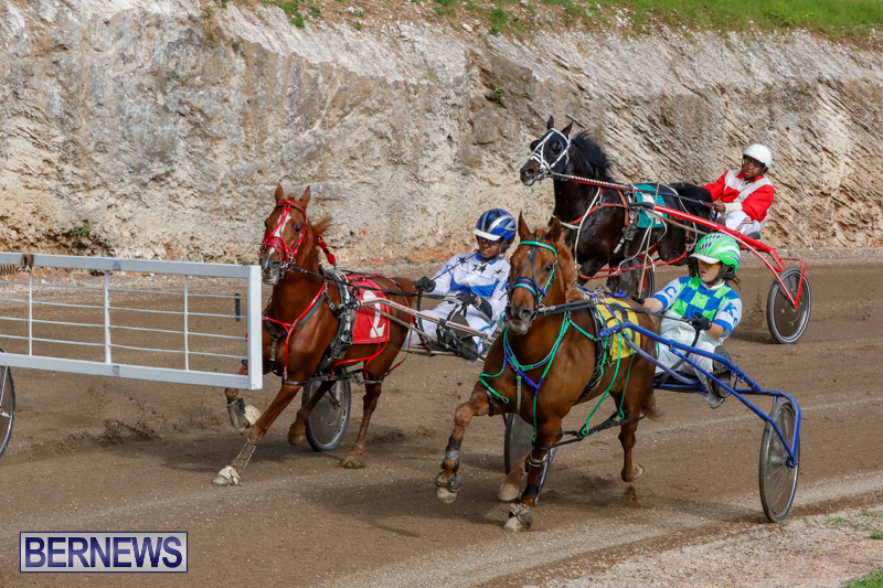 Harness-Pony-Racing-Bermuda-December-26-2017-8416