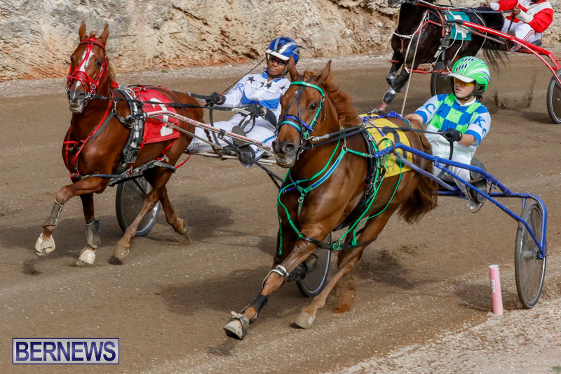 Harness-Pony-Racing-Bermuda-December-26-2017-8419