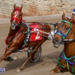 Harness Pony Racing Bermuda, December 26 2017-8421