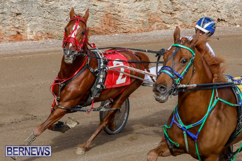 Harness-Pony-Racing-Bermuda-December-26-2017-8421