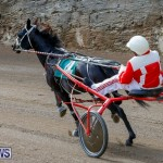Harness Pony Racing Bermuda, December 26 2017-8424