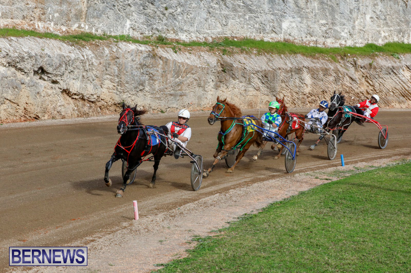 Harness-Pony-Racing-Bermuda-December-26-2017-8428