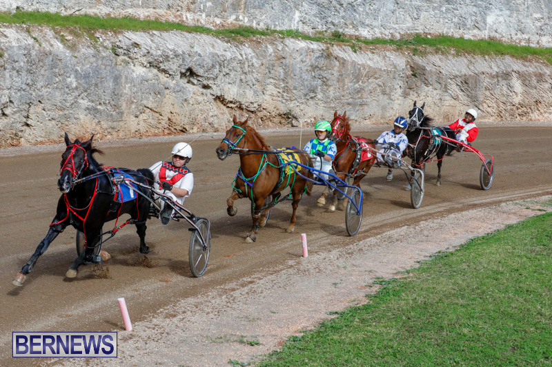 Harness-Pony-Racing-Bermuda-December-26-2017-8430