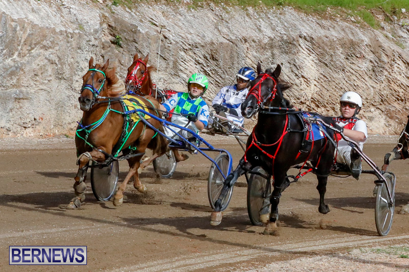 Harness-Pony-Racing-Bermuda-December-26-2017-8438