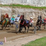 Harness Pony Racing Bermuda, December 26 2017-8439
