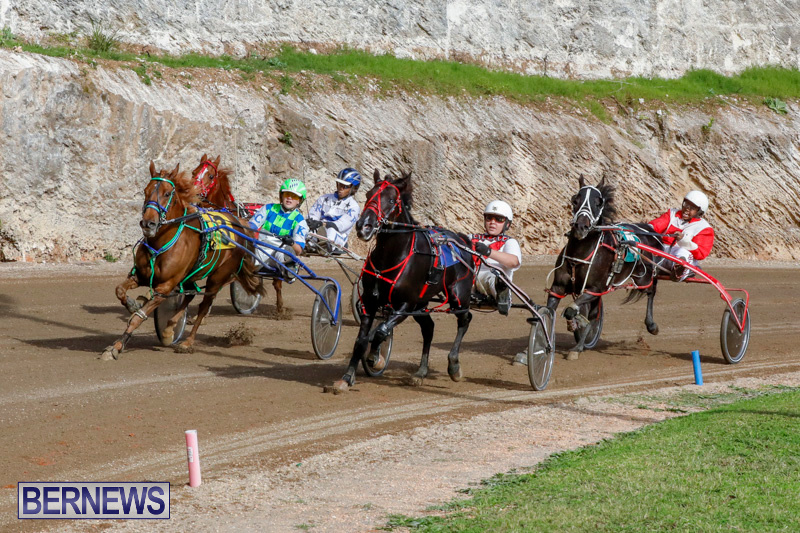 Harness-Pony-Racing-Bermuda-December-26-2017-8439