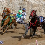 Harness Pony Racing Bermuda, December 26 2017-8440