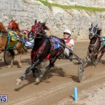 Harness Pony Racing Bermuda, December 26 2017-8444