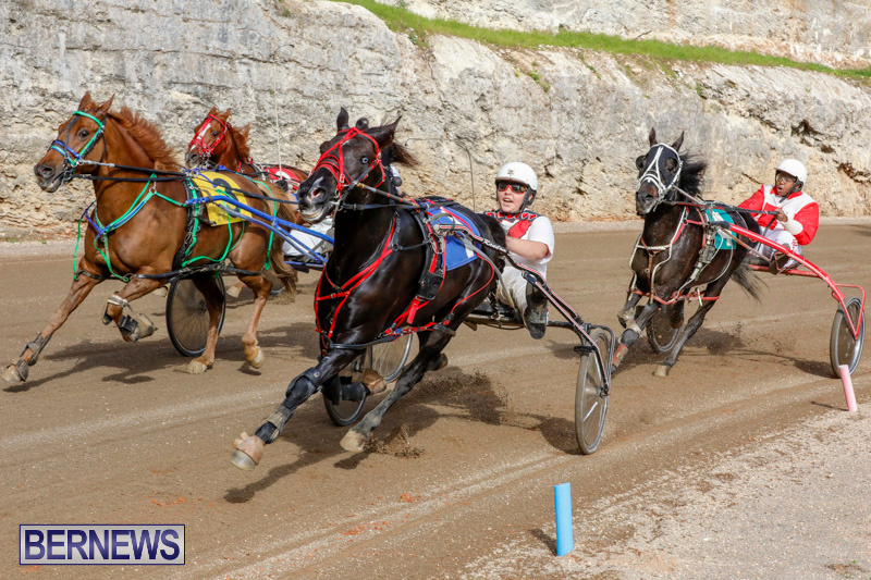 Harness-Pony-Racing-Bermuda-December-26-2017-8444