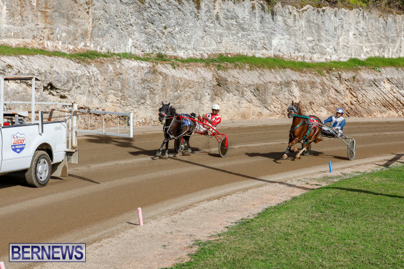 Harness-Pony-Racing-Bermuda-December-26-2017-8474