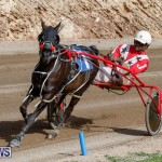 Harness Pony Racing Bermuda, December 26 2017-8481